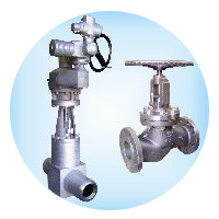SUPLEMENT VALVES PROGRAM